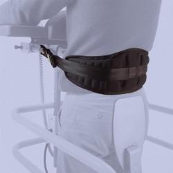 Cinghia dorsale per stabilizzatore struzzo
